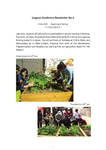 Lingnan Gardeners Newsletter (No. 3) = 嶺南彩園通訊 (第3期)