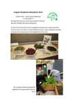 Lingnan Gardeners Newsletter (No. 4) = 嶺南彩園通訊 (第4期) by Lingnan Gardeners, Kwan Fong Cultural Research and Development Programme, Lingnan University