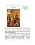 Lingnan Gardeners Newsletter (No. 7) = 嶺南彩園通訊 (第7期)