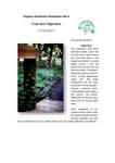 Lingnan Gardeners Newsletter (No. 8) = 嶺南彩園通訊 (第8期)