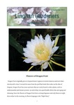 Lingnan Gardeners Newsletter (No. 33) = 嶺南彩園通訊 (第33期) by Lingnan Gardeners, Kwan Fong Cultural Research and Development Programme, Lingnan University