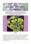 Lingnan Gardeners Newsletter (No. 36) = 嶺南彩園通訊 (第36期) by Lingnan Gardeners, Kwan Fong Cultural Research and Development Programme, Lingnan University