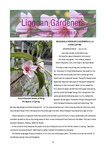 Lingnan Gardeners Bimonthly Newsletter (No. 42) = 嶺南彩園通訊 (第42期)